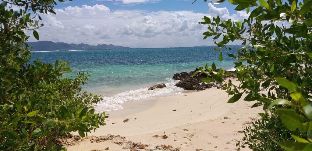 Limin da Coconut Beach